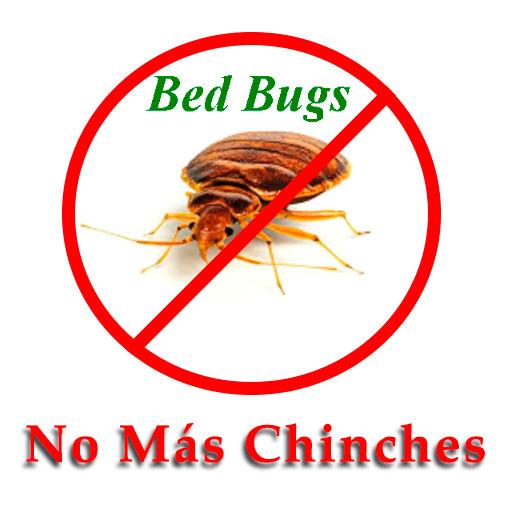 file-No-mas-chinches.jpg
