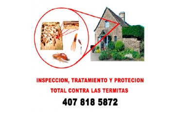 HOW CAN I KNOW IF I HAVE TERMITES IN MY HOUSE?